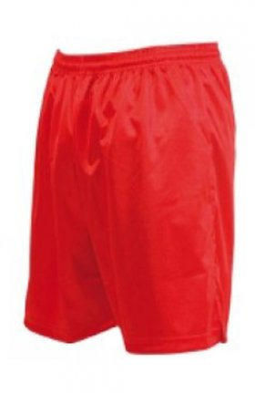 Micro Stripe Shorts