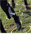 Agility Interlocked Hoops