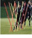 Boundary Poles set of 12