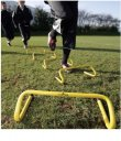 Step Training Hurdle